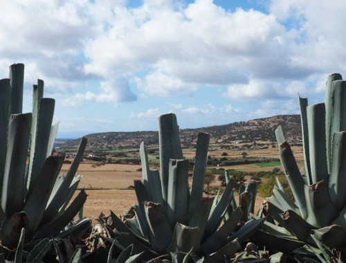 What to do on Naxos island