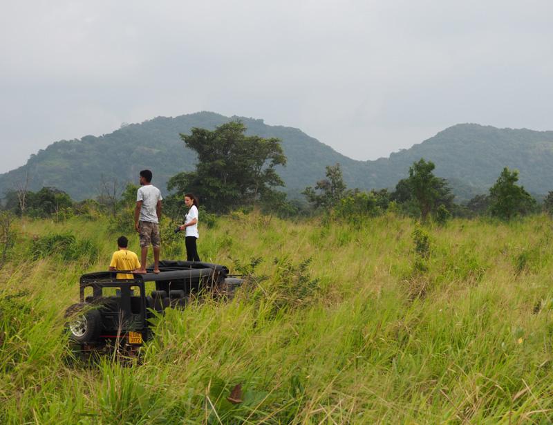 Safari à Hurulu Eco Park, Sri Lanka