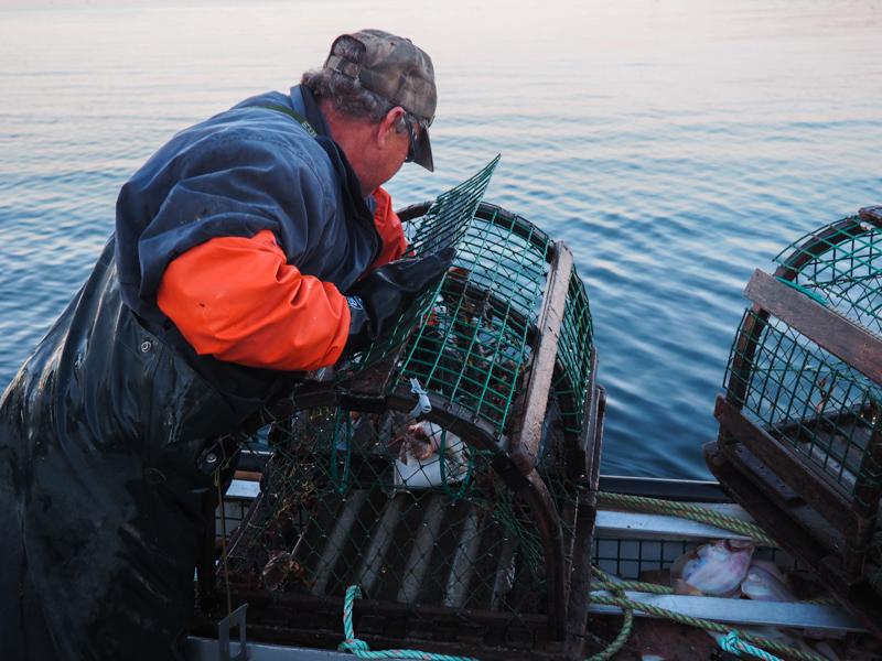 Pêcher le homards aux îles de la Madeleine
