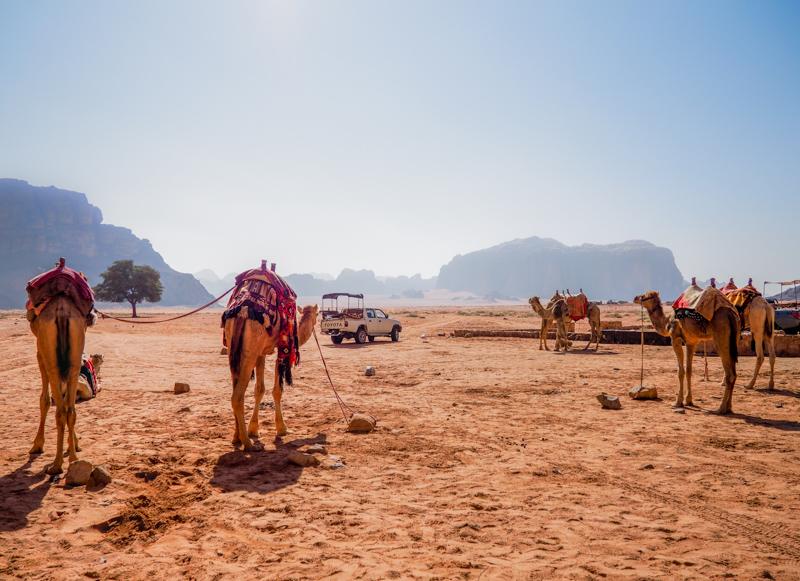Désert du Wadi Rum en Jordanie