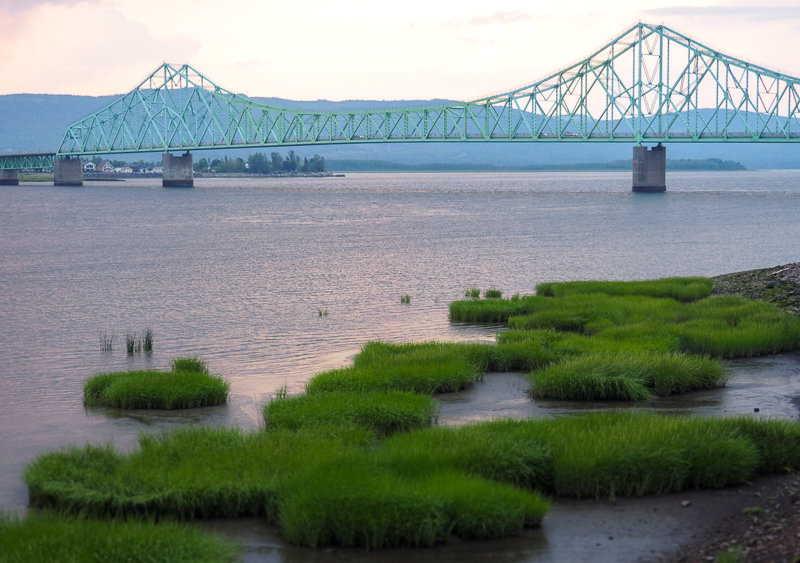 Rivière Restigouche à Campbellton, Nouveau-Brunswick