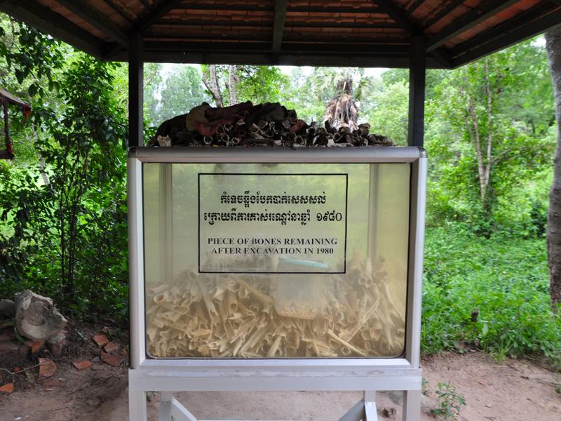 Ossements retrouvés dans les Killing Fields, au Cambodge