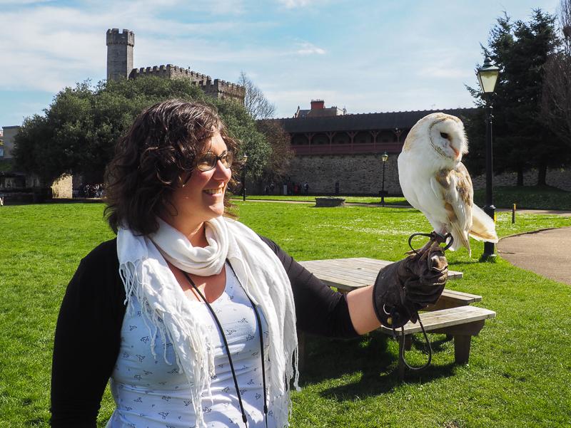 Spectacle d'oiseaux de proie au Château de Cardiff