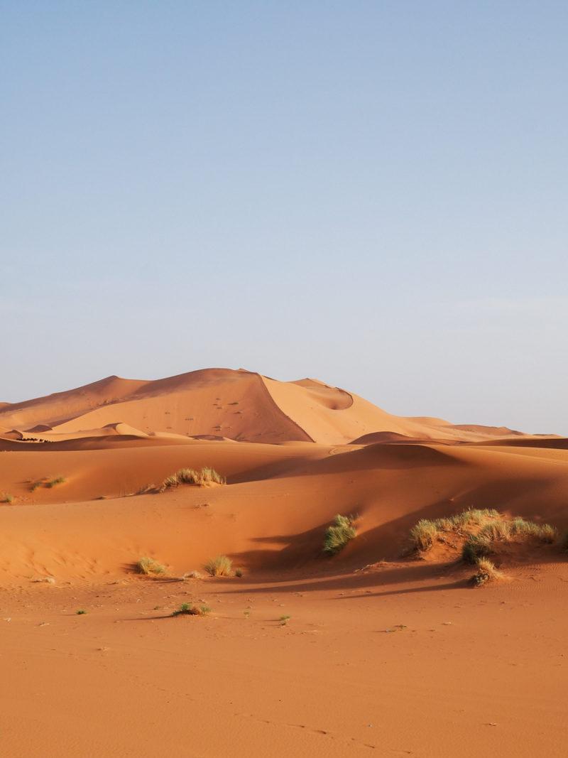 Dunes de sable dans le désert du Sahara
