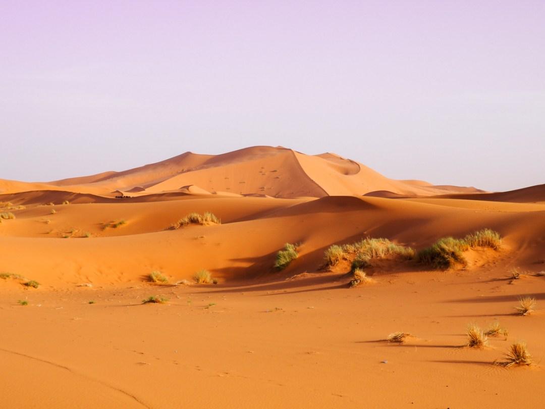Visiter le désert du Sahara avec Mouhou Tours