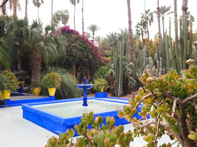 Fontaine du Jardin Majorelle de Marrakech