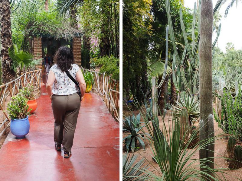 Visiter le Jardin Majorelle en suivant le trajet