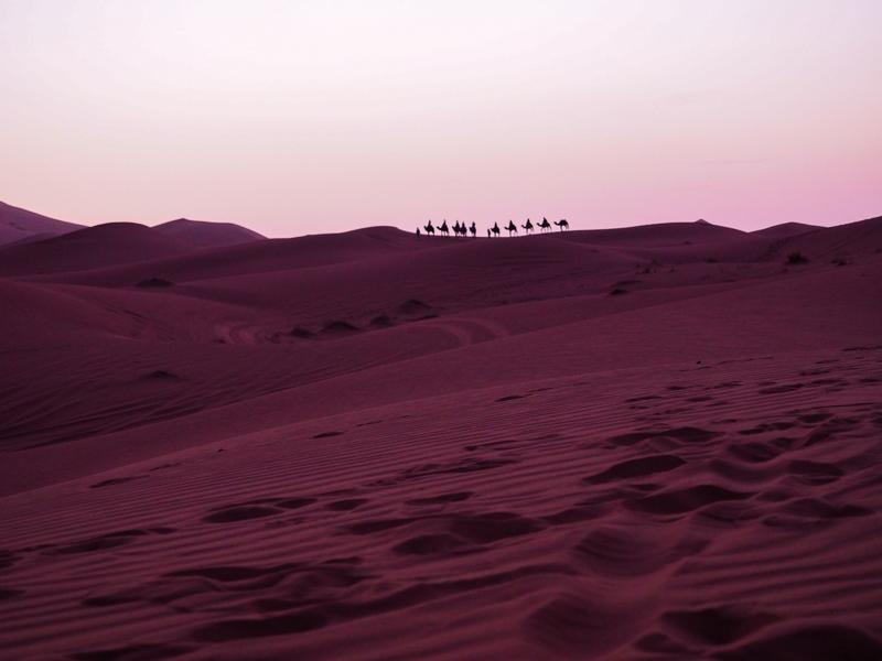 Coucher de soleil sur le désert du Sahara au Maroc