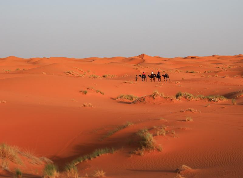 Dunes dans le désert du Sahara au Maroc
