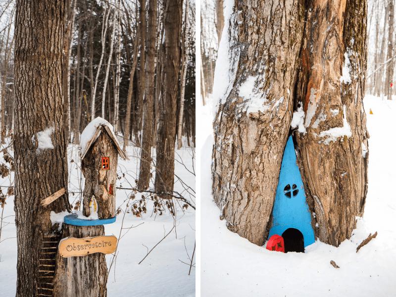 Parc régional Godefroy - randonnée en raquette avec maisons de gnomes