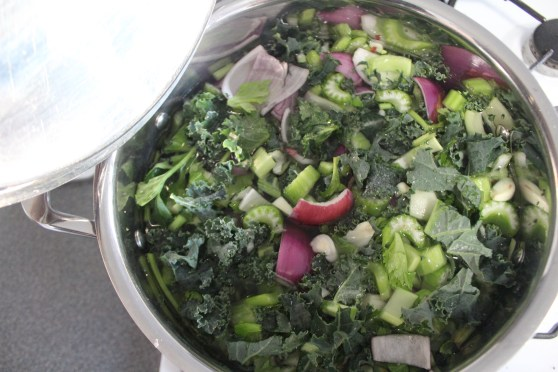 Broth Cooking