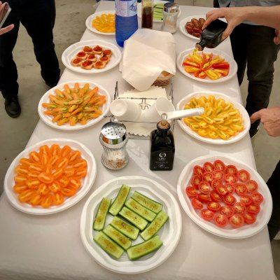Tomato tasting at Clisol