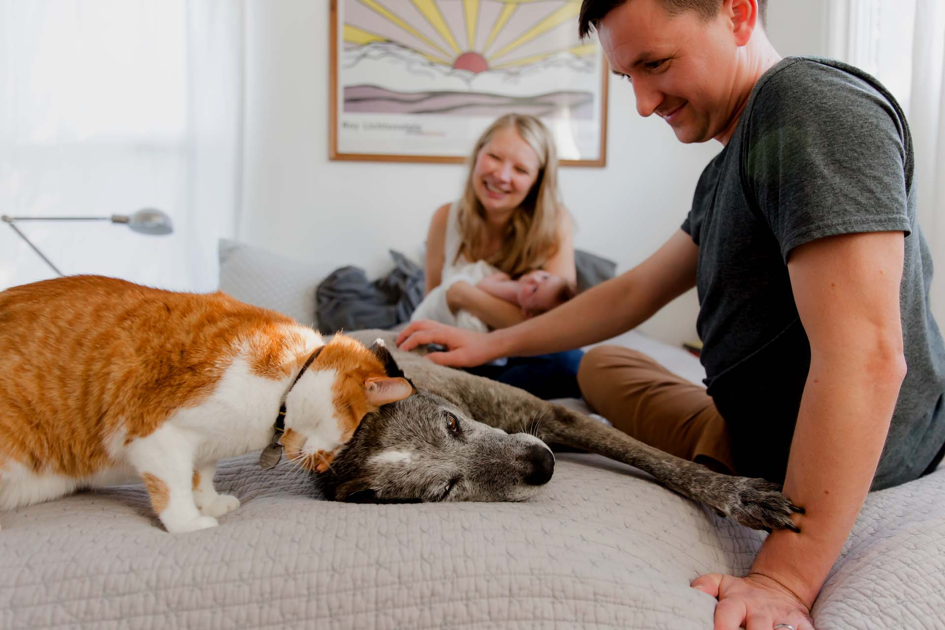 Family photo session with dog and cat and newborn baby in seattle by annie helen photography
