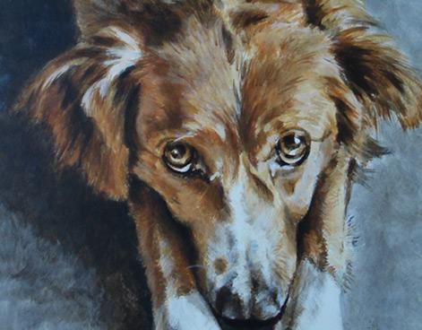 Annie Vne Peintre Dco Peinture Murales Trompe Loeil