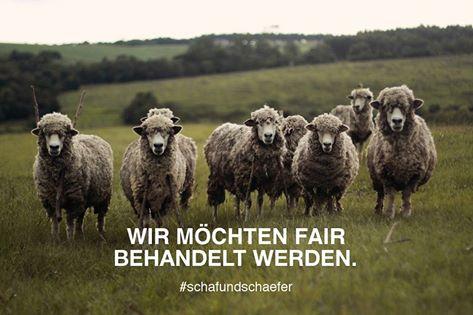 Schaf & Schäfer: Wir möchten fair behandelt werden