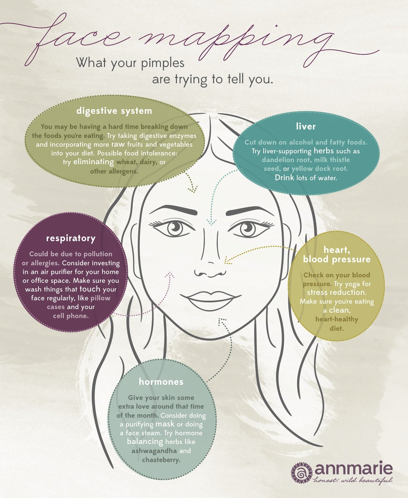 what causes acne diagram gfci split receptacle wiring face mapping your pimples are trying to tell you