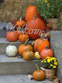 Fall Frenzy Week: Easy pumpkin decorations for your home!