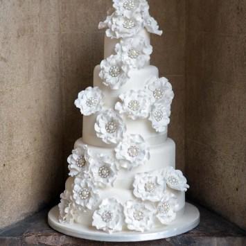 cakes224