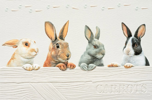 Greeting Card Rabbits Anns Fine Gifts Houston Texas