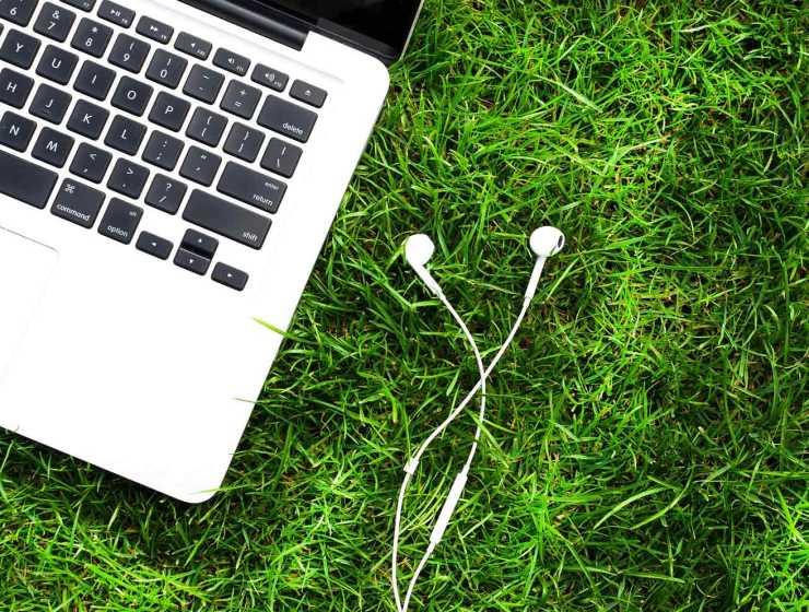 feedbands streaming ecolo