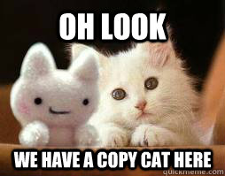 white cat and doll copycat