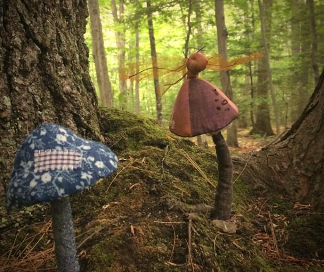 enchanted toadstools