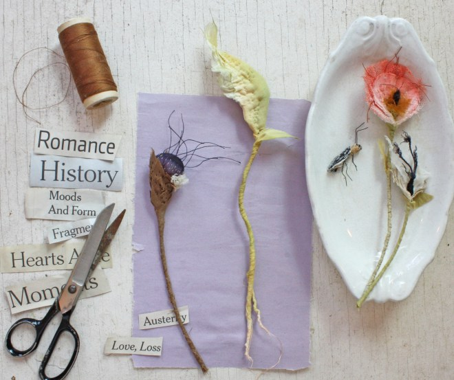 natural history : a workshop with ann wood