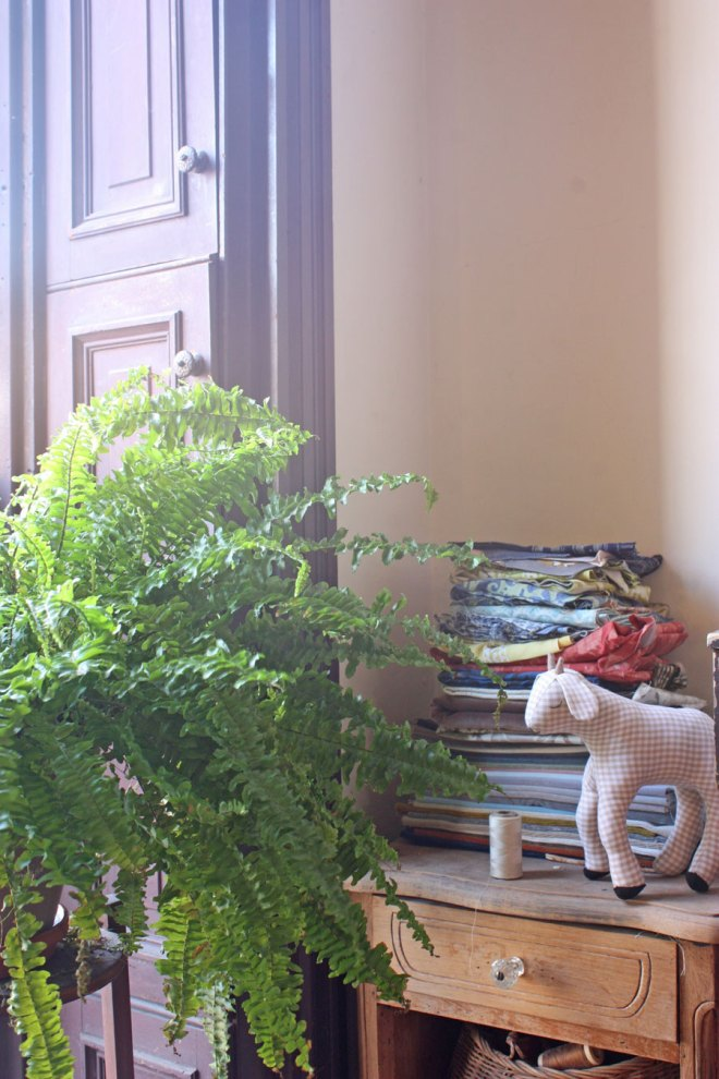 a boston fern and a handmade goat