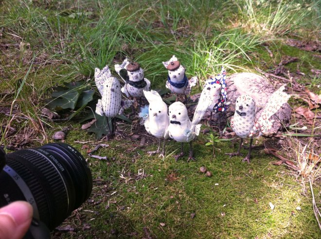 a wedding party of little birds in the forest