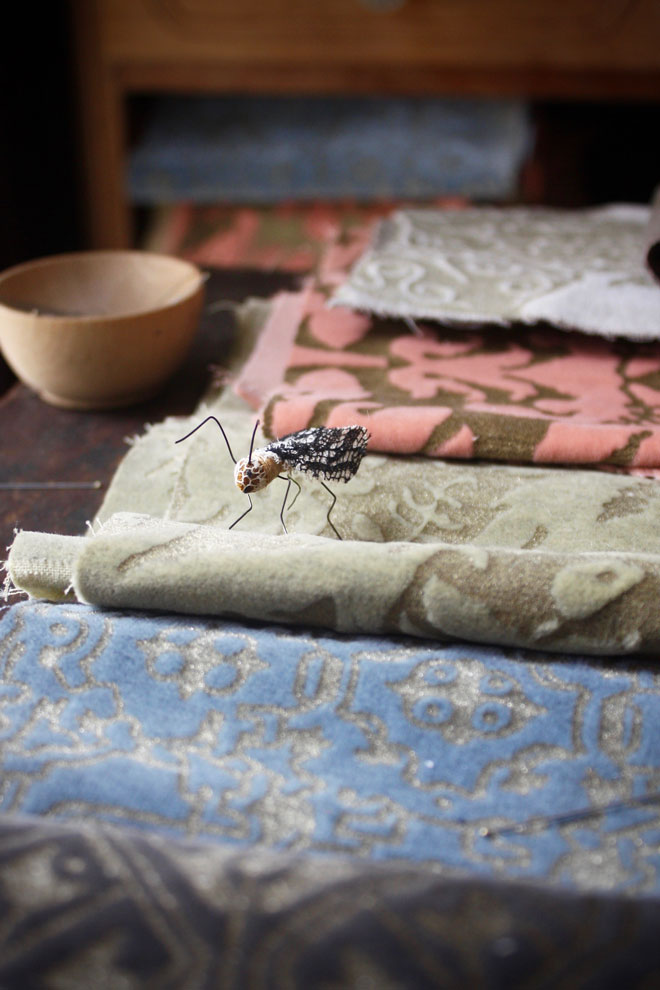 a tiny handmade fly inspecting fortuny velvet