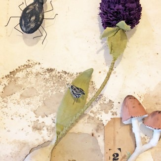 stitched botanicals workshop images