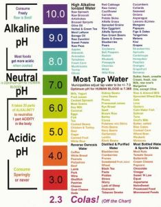 Ph food chart also cancer stopped rh cancerstoppedspot
