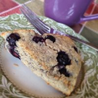 Blueberry S Scone – egg free! (Cranberry/orange baking blend variation too)