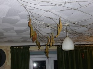 Drying baccy
