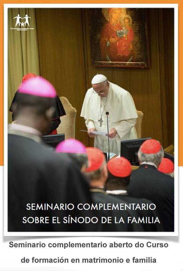 Copia de Seminario complementario sobre o sínodo da familia