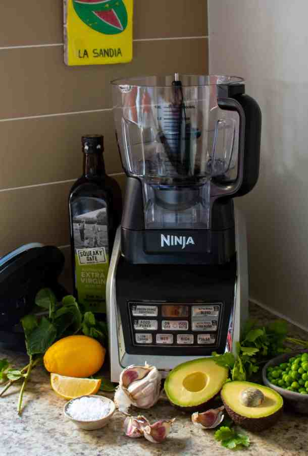 ninja blender, vegetables & herbs on kitchen counter