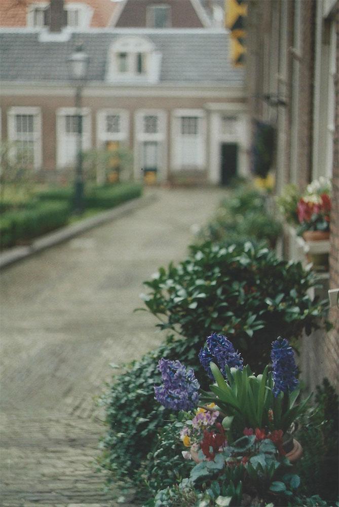 Hofje in Haarlem | antoher reverie