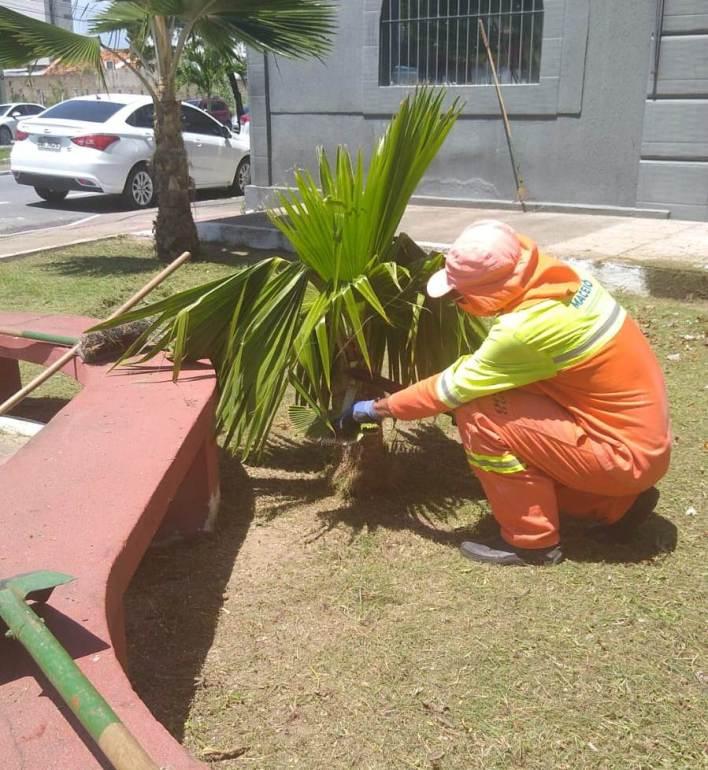 Praça do Rex recebe serviços de limpeza. Foto: Ascom Sudes