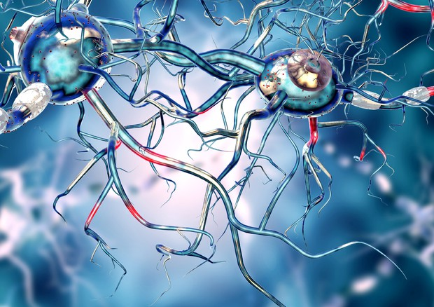 Prima macchina che cura tremore del Parkinson con ultrasuoni © Ansa