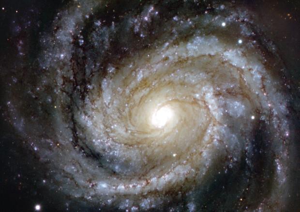 La Via Lattea si sta gonfiando  Spazio  Astronomia  ANSAit