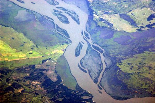 L'Amazzonia si sta trasformando, ormai a rischio collasso