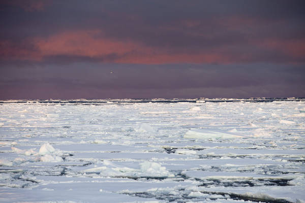 Groenlandia, meno 200 miliardi tonnellate ghiaccio in 9 anni