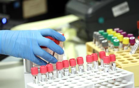 Coronavirus: Sixth victim in Italy, over 200 infected - English ...