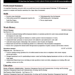What Makes a Professional Resume? Download Some Great Samples Here