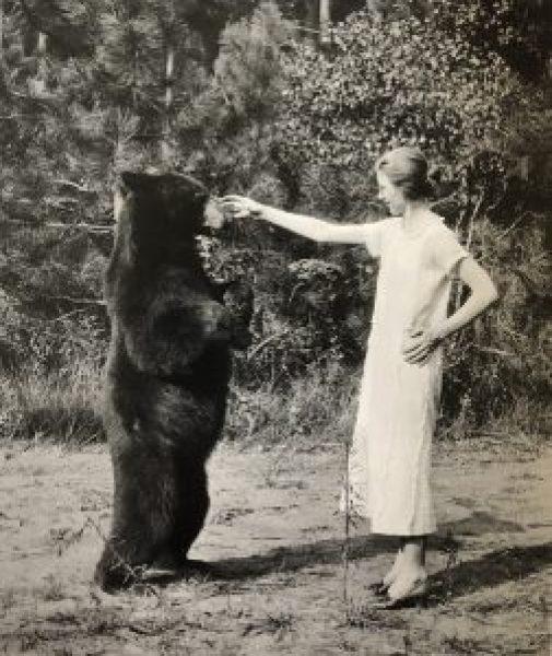 Virginia Best with a friendly Bear, Yosemite Valley, California, c. 1925