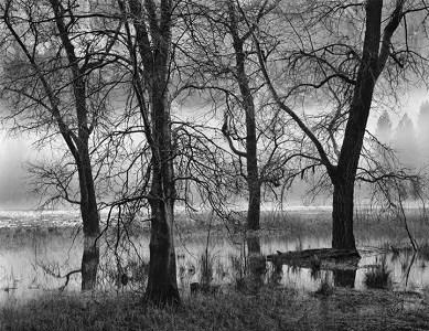 Photography by John Sexton
