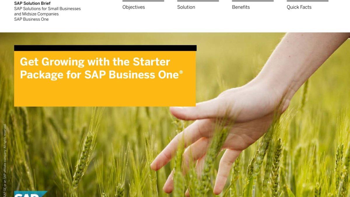 SAP Solution Brief