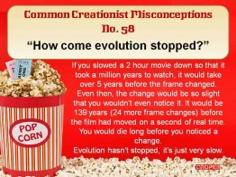 Creationist Misconceptions No. 58 - Evolution stopped