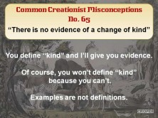 Creationist Misconceptions No. 65 - Change in kind