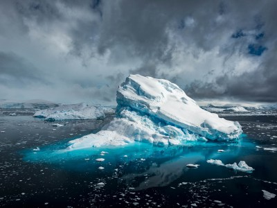 Image of New Trips Released Today! Antarctica & the Sub-Antarctic Islands
